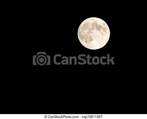 滿月 - csp15611267