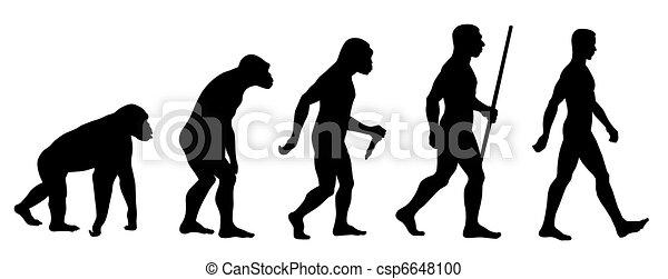 演化 - csp6648100