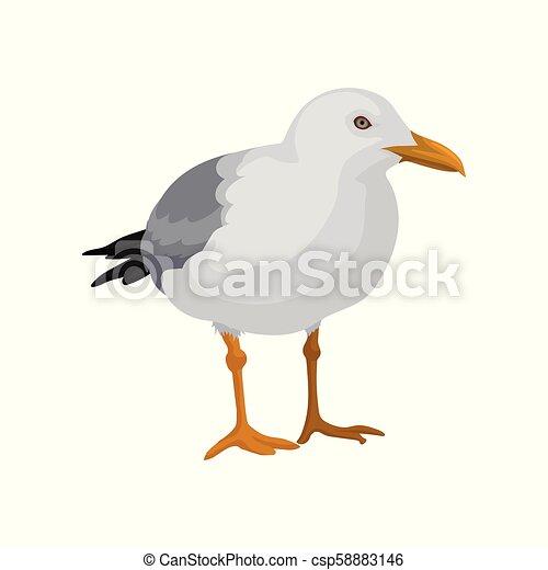 灰色 海 白 イラスト 地位 ベクトル 背景 かもめ 鳥 灰色 白
