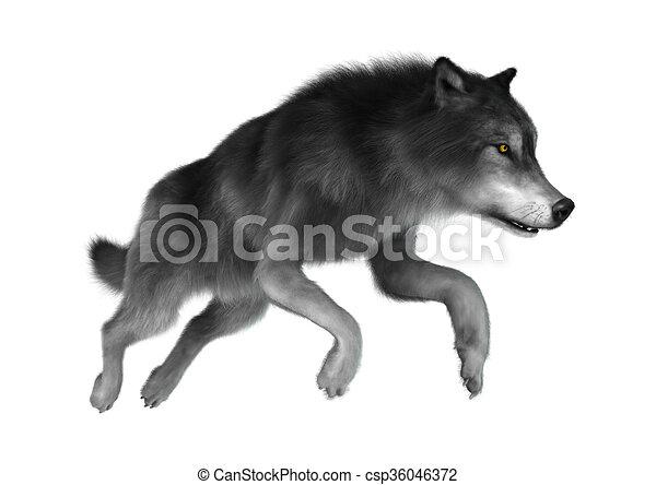 灰色 白い狼 イラスト 3d 灰色 隔離された イラスト 跳躍 狼