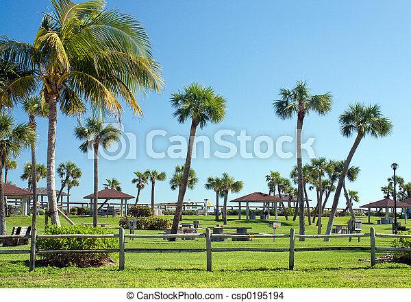 热带, 公园 - csp0195194