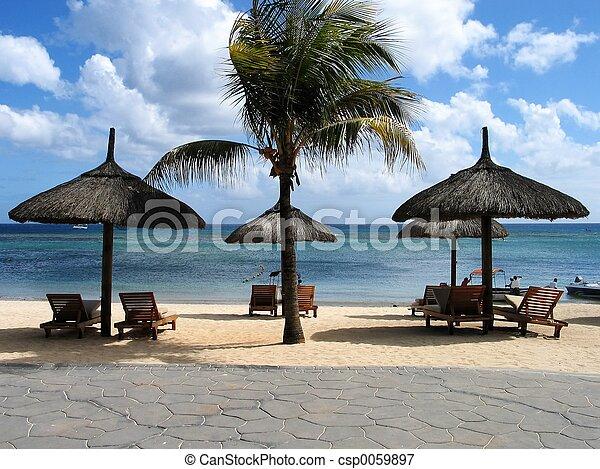 熱帯 浜 - csp0059897