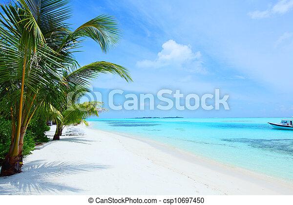 熱帶的島 - csp10697450