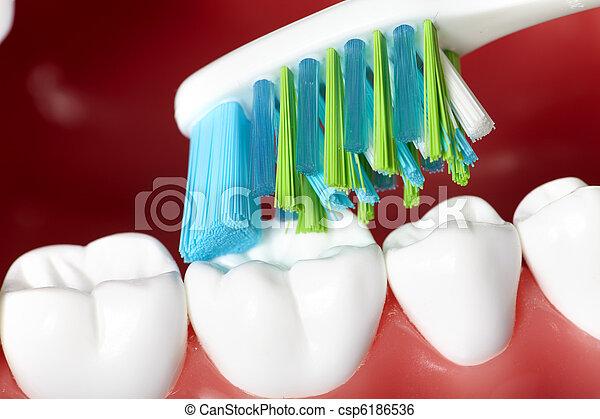 牙齒 - csp6186536