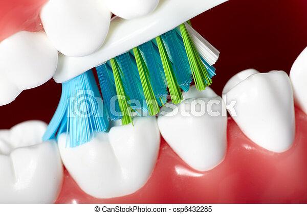 牙齒 - csp6432285