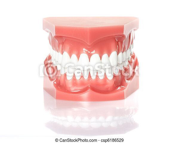 牙齒 - csp6186529