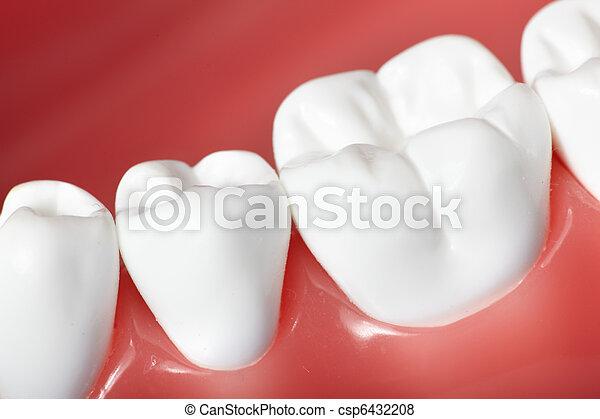 牙齒 - csp6432208