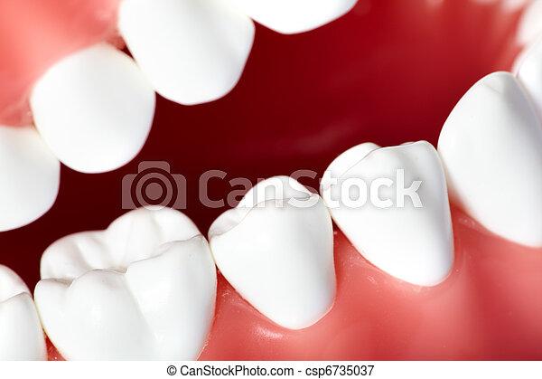 牙齒 - csp6735037