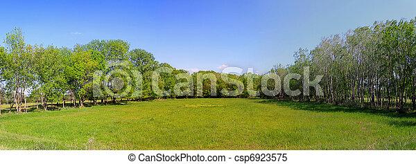 牧草地 - csp6923575