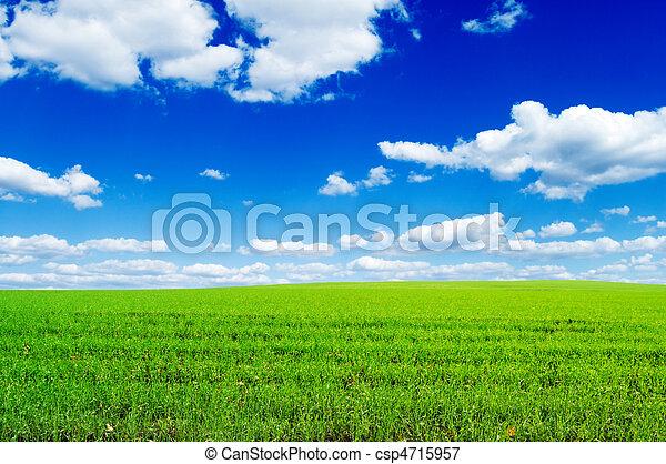 牧草地 - csp4715957