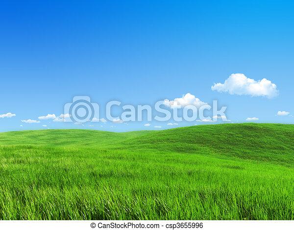 牧草地, 自然, -, コレクション, 緑, テンプレート - csp3655996