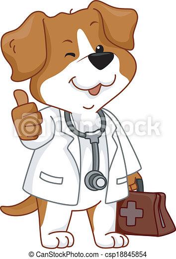 獣医, 「オーケー」, 犬 - csp18845854