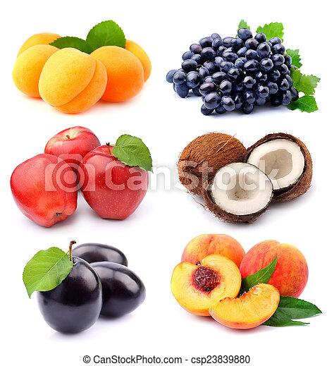 甜, 彙整, 水果 - csp23839880