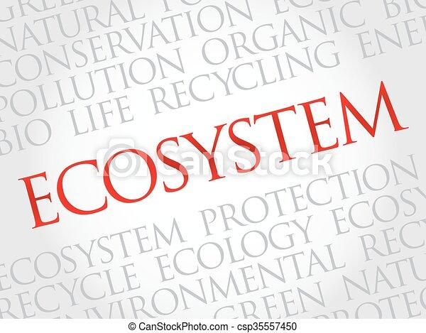 生態系, 詞, 雲 - csp35557450