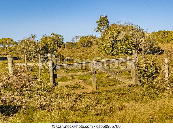 田舎, 現場, maldonado, ウルグアイ - csp50985786
