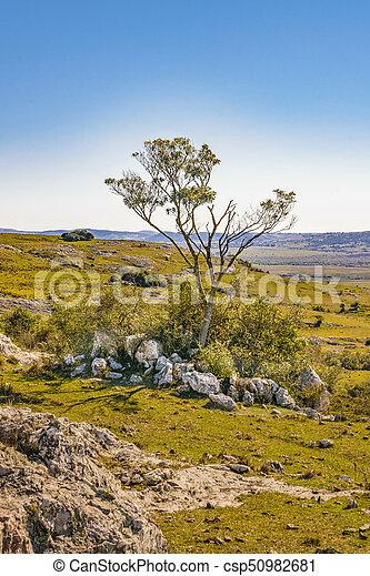 田舎, maldonado, 風景, 岩が多い, ウルグアイ - csp50982681