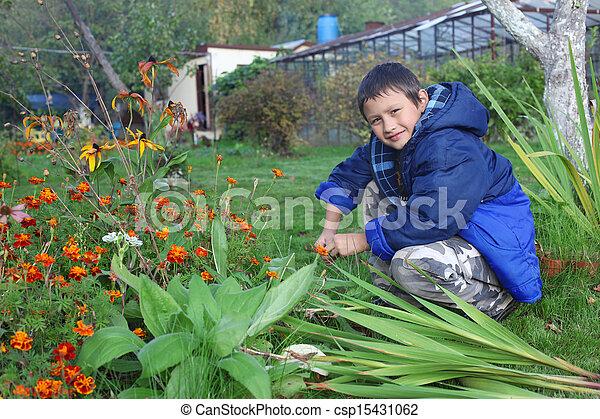 男の子, わずかしか, 花, 屋外で - csp15431062