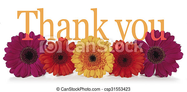 発言, あなた, 花, 感謝しなさい - csp31553423