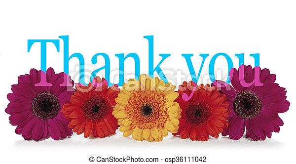 発言, あなた, 花, 感謝しなさい - csp36111042