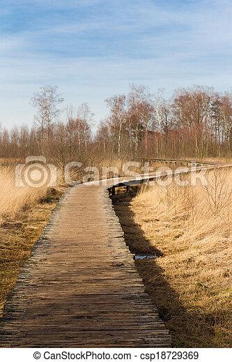 皮, groote, 木製である, 国民, de, 公園, curvy, によって, 道 - csp18729369