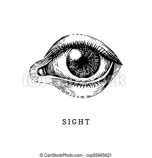 目に人を配置する 光景 イラスト 手 ベクトル 人間 センス 引