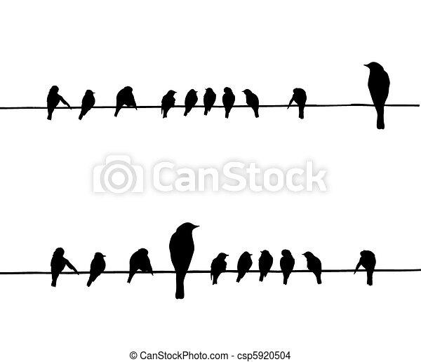 矢量, 黑色半面畫像, 電線, 鳥 - csp5920504