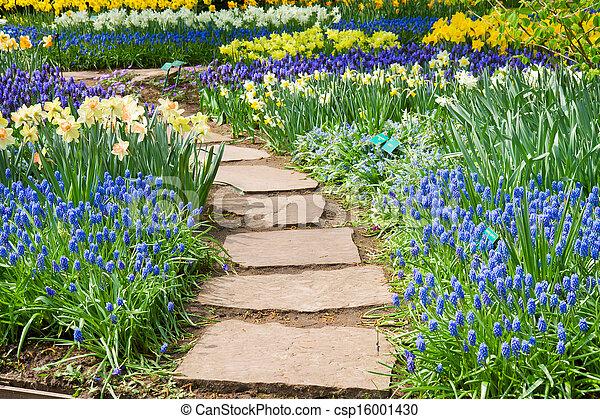 石, 巻き取り, 庭道 - csp16001430