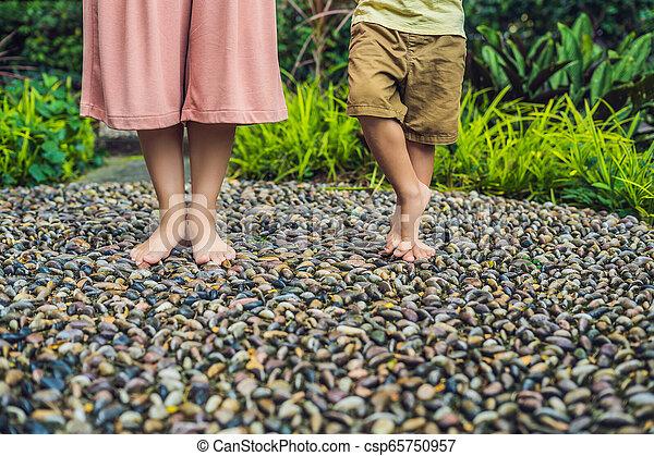 石, 歩くこと, 母, 舗装, reflexology., 玉石, 息子, reflexology, 舗装, textured, フィート, 小石 - csp65750957