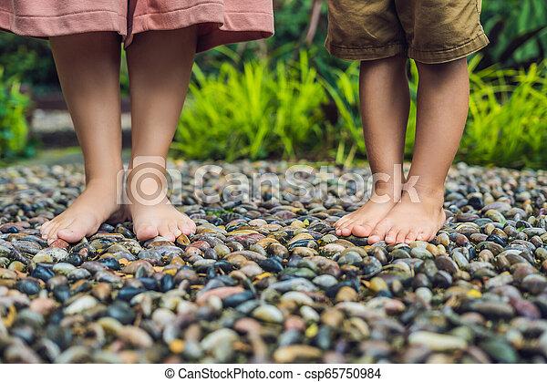 石, 歩くこと, 母, 舗装, reflexology., 玉石, 息子, reflexology, 舗装, textured, フィート, 小石 - csp65750984