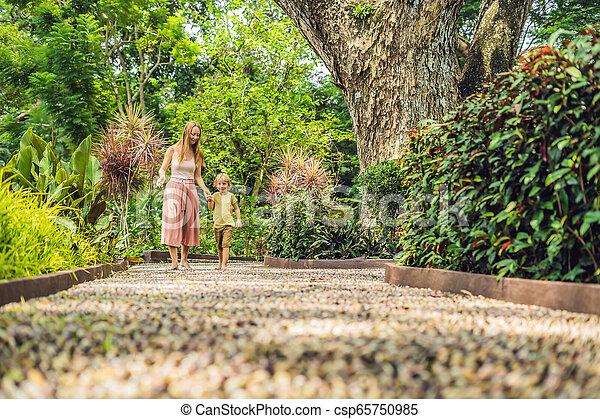 石, 歩くこと, 母, 舗装, reflexology., 玉石, 息子, reflexology, 舗装, textured, フィート, 小石 - csp65750985