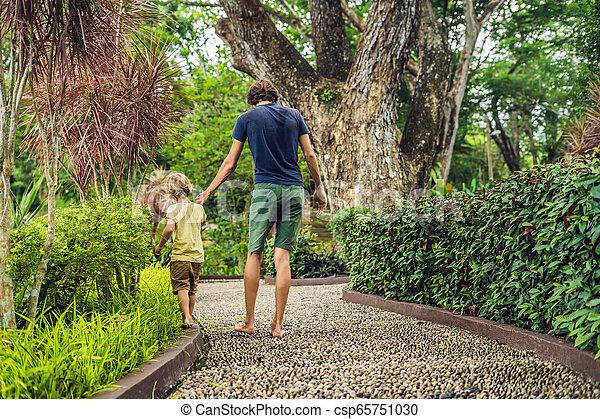石, 歩くこと, reflexology., 舗装, 父, 玉石, 息子, reflexology, 舗装, textured, フィート, 小石 - csp65751030