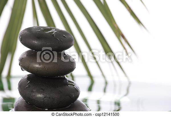 石, 禅 - csp12141500