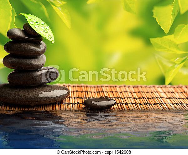 石, eco, 葉, 水, 緑の背景, エステ - csp11542608