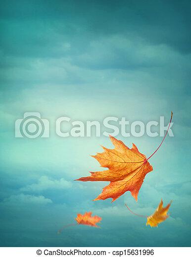 秋天, 下落的 葉子 - csp15631996