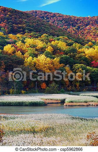 秋天, 山湖 - csp5962866