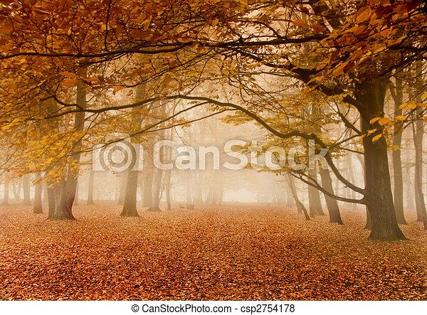 秋天, 有霧 - csp2754178