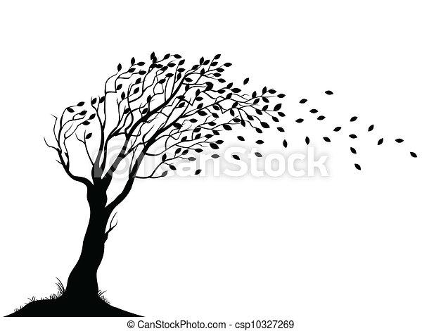 秋天, 樹, 黑色半面畫像 - csp10327269
