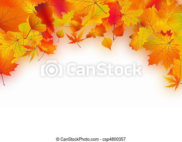 秋季树叶, 落下, 背景 - csp4800357