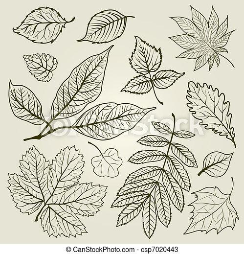 秋, ベクトル, セット, leafs - csp7020443