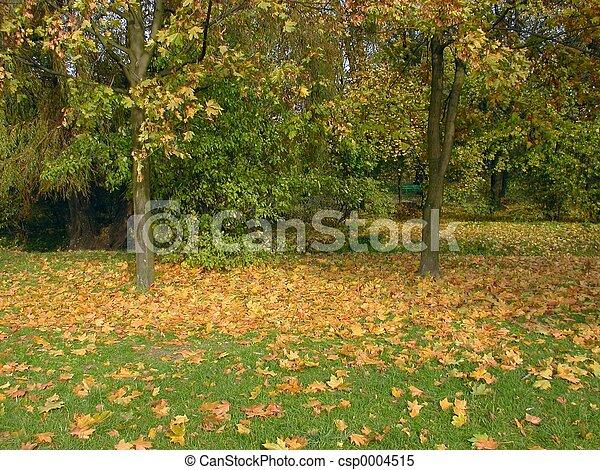 秋, 公園 - csp0004515