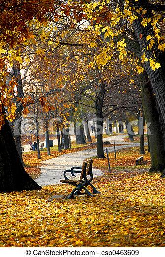 秋, 公園 - csp0463609