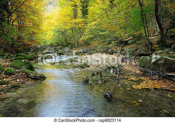 秋, 川, 森林 - csp6823114
