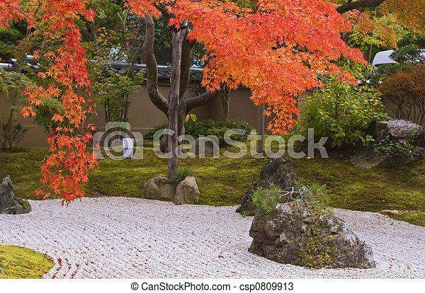 秋, 日本の庭 - csp0809913