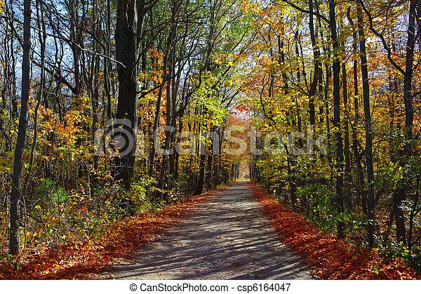 秋, 景色 - csp6164047