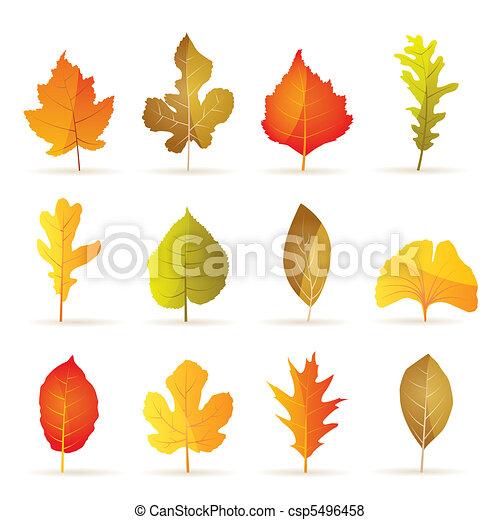 秋, 木, 別, 葉, 種類 - csp5496458