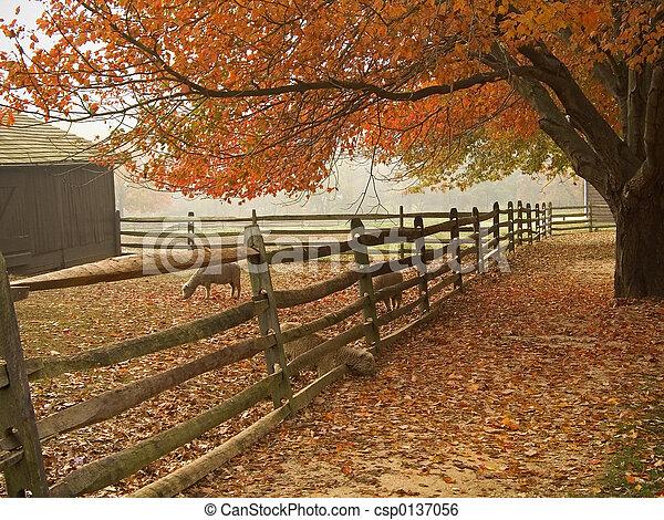 秋, 納屋の前庭 - csp0137056