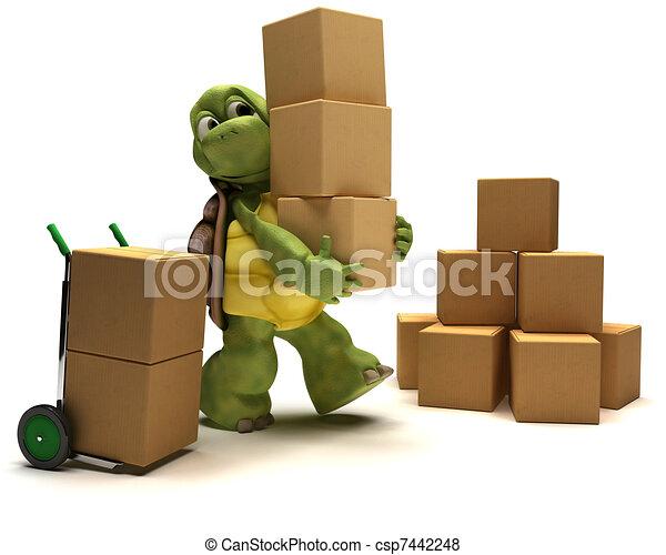 箱, カメ, 出荷 - csp7442248