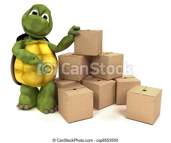 箱, カメ, 出荷 - csp6553500