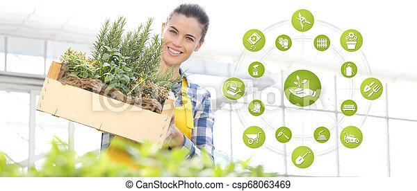 箱, 装置, 女, 園芸, 庭, フルである, インターネット商業, 木製である, 春, アイコン, ハーブ, 概念, 微笑, 白い背景, スパイス - csp68063469