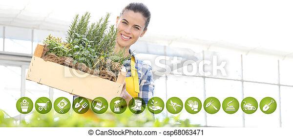 箱, 装置, 女, 園芸, 庭, フルである, インターネット商業, 木製である, 春, アイコン, ハーブ, 概念, 微笑, 白い背景, スパイス - csp68063471